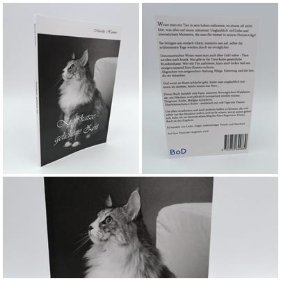Krebskatze - geliehene Zeit - Erfahrungsbericht zur Begleitung einer Katze mit Krebs