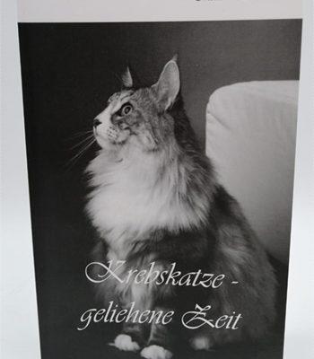 Krebskatze – geliehene Zeit – Erfahrungsbericht zur Begleitung einer Katze mit Krebs