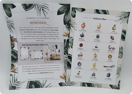 "Die nachhaltige TrendRaider Box - Mai-Box mit dem Thema ""Urban Jungle"""